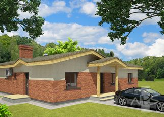 House project Aines