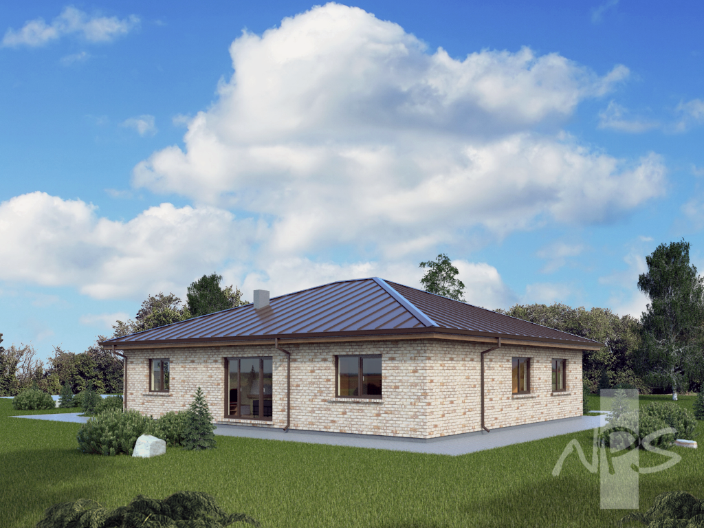 Single storey house project with a garage asa  NPS Houseproject - ^